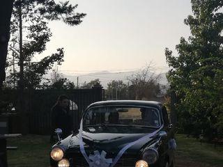 Vintage Car Rentals 3