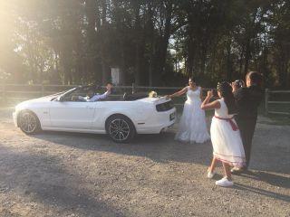 Llegó la novia 1