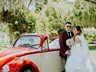 Escarabajos para Matrimonios 2