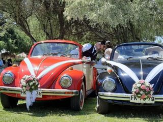 Escarabajos para Matrimonios 3