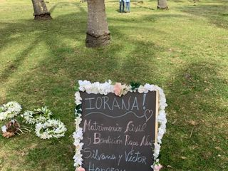 Amua Rapa Nui 3