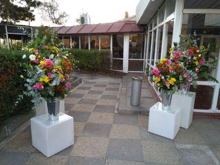Flores & Piedras 3