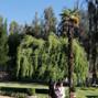 Blanca Bonita 11
