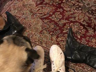 La Ragazza - Zapatos y Zapatillas 2