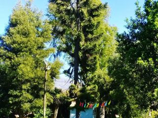Parque San Ramón 4