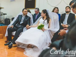 Carla Araya 7