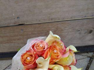 Flores & Piedras 2