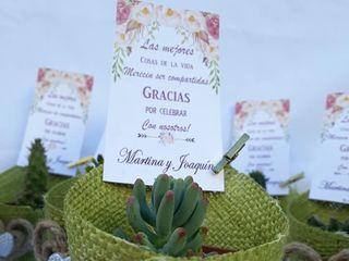 Kadú Cactus y Suculentas 7