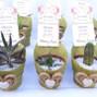 Kadú Cactus y Suculentas 12