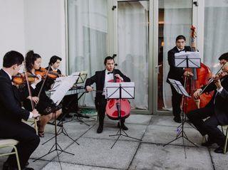 The Cadenza Strings 1