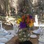 Olivos del Monte 2