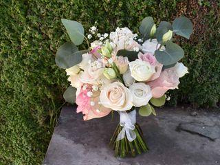Flores Kathy Holmes 5