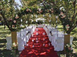 Wedding Photography 1