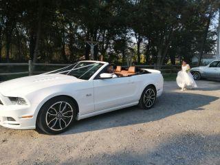 Llegó la novia 2