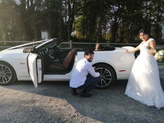 Llegó la novia 4