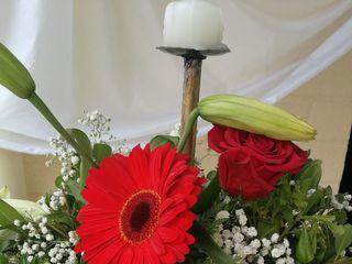 Te Regalo una Flor 2