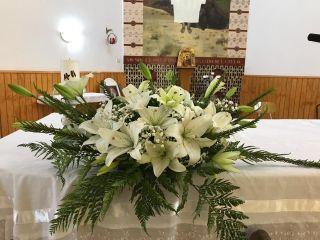 Alta Flor 1