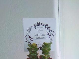 Plantiquería 3