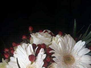 Alta Flor 3