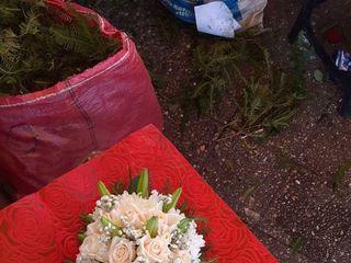 Florería Chelita 2