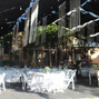 Butterfly Banquetes 12