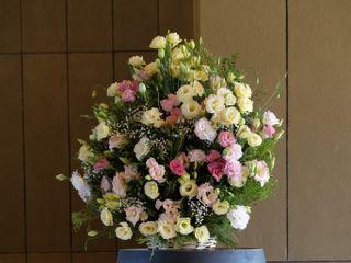 Pasión Floral 3