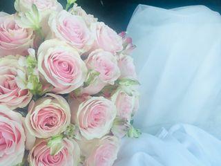 Flores Consentida 4