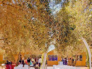 Campo Getsemaní 2