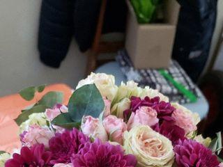 Voilà Fleurs 1