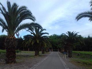 Villa Golf 3