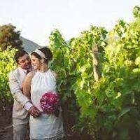 Fotos referenciales Viñedos