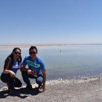 Laguna Chaxa y flamencos