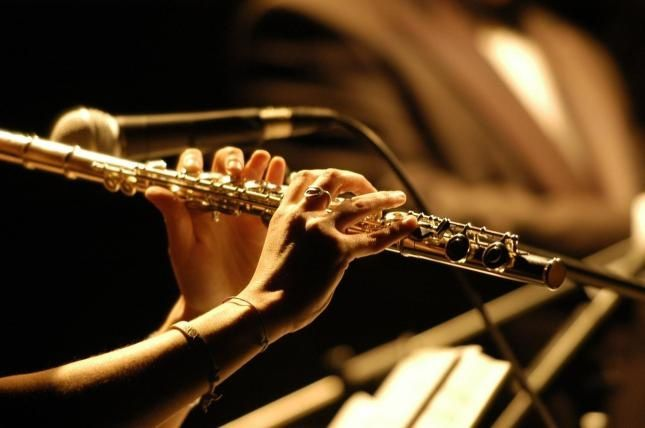 M sica cl sica para enamorar for Musica clasica para entrenar