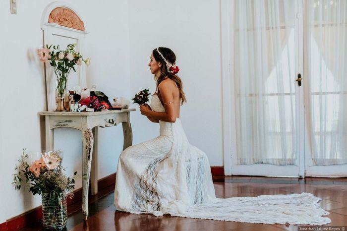 ¿Quién te acompañó o acompañará a ver el vestido? 1
