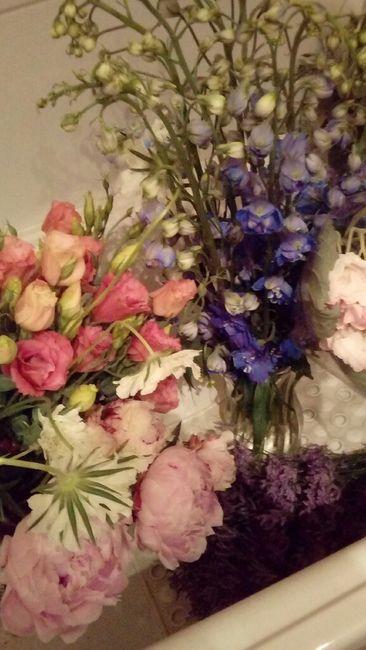 Flores: Pérgola, Mercado Central o Terminal? 3