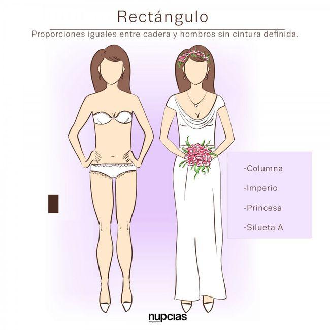 Vestidos según la forma del cuerpo 2