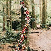 Boda secreta en el bosque - 5