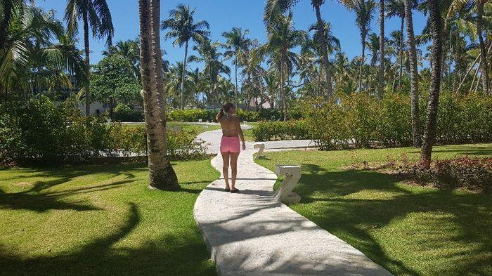 En el paraíso del Caribe! Punta Cana 7