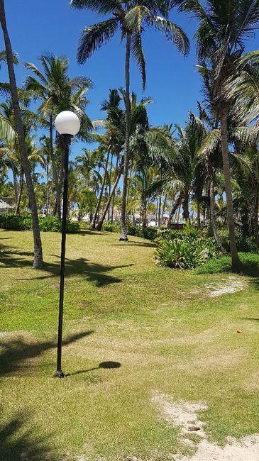 En el paraíso del Caribe! Punta Cana 8