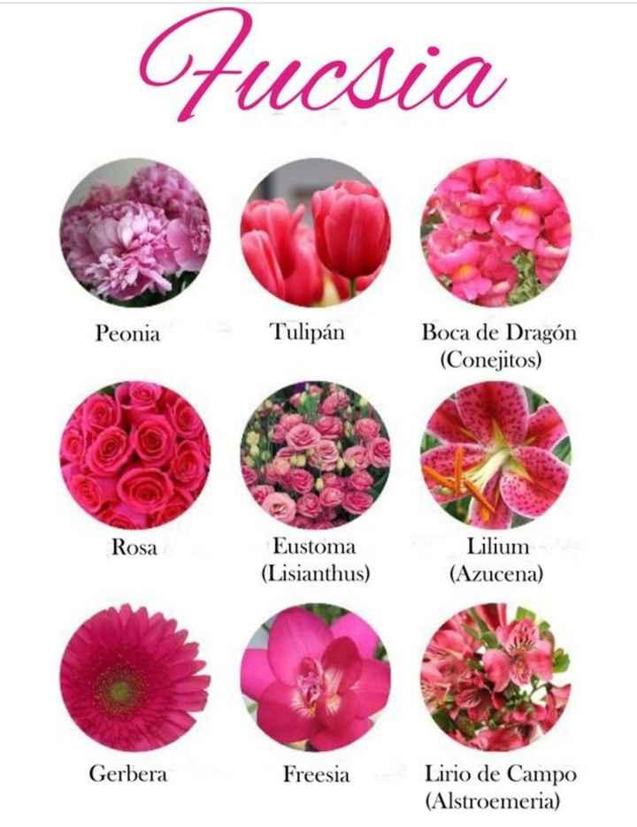 Flores por color - 12
