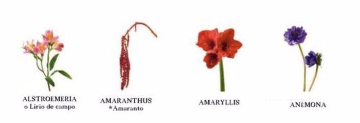 Tipos de flores - Clase de flores y sus nombres ...