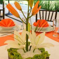 Flores para los centros de mesas...necesito ideas!!.... - 5
