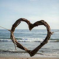 Matrimonio eco friendly 🌱 - 7