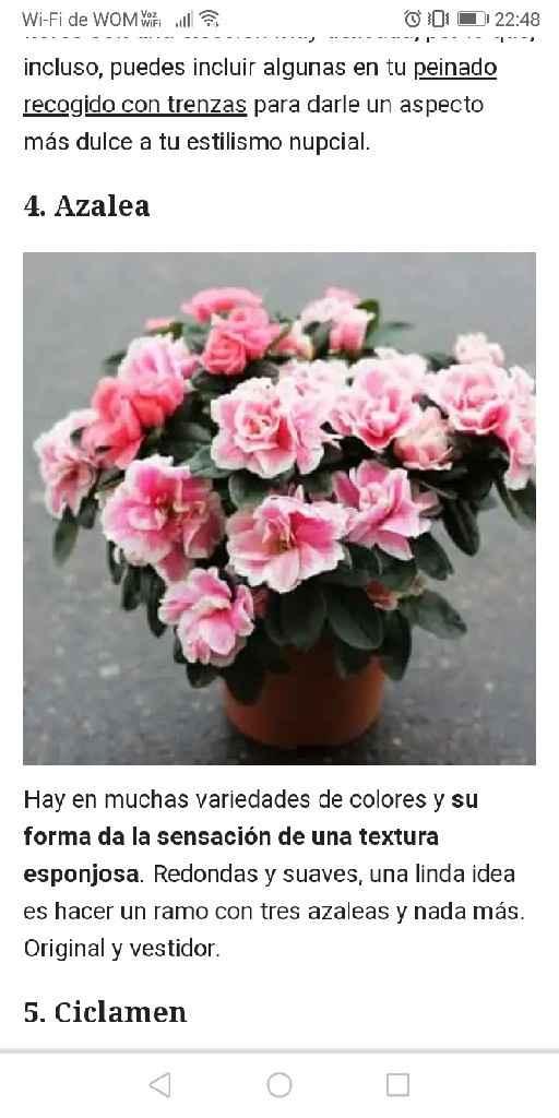 Flores para los centros de mesas...necesito ideas!!.... - 1
