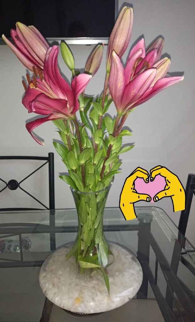 Consejito para las flores de nuestro gd 1