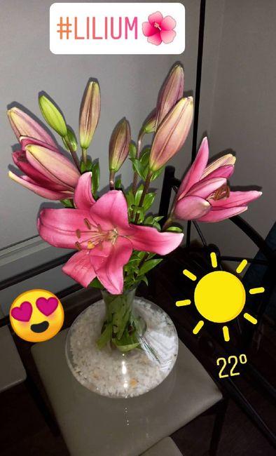 Consejito para las flores de nuestro gd 2