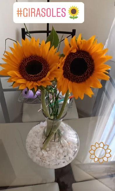Consejito para las flores de nuestro gd 7