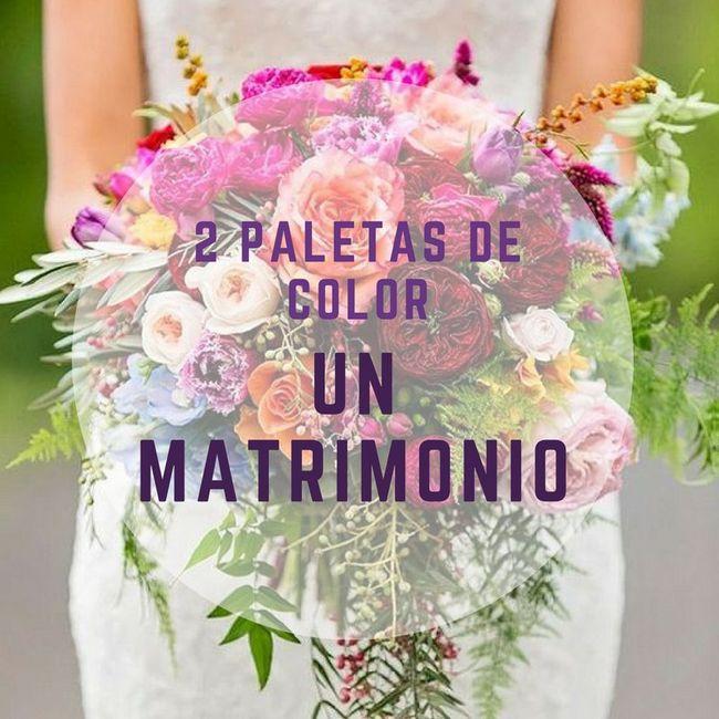 2 paletas de COLOR, un ÚNICO matrimonio. ¡Elige! 1