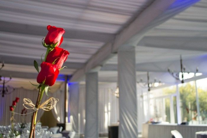 Nuestra boda y proveedores, Calera de Tango - Stgo 13