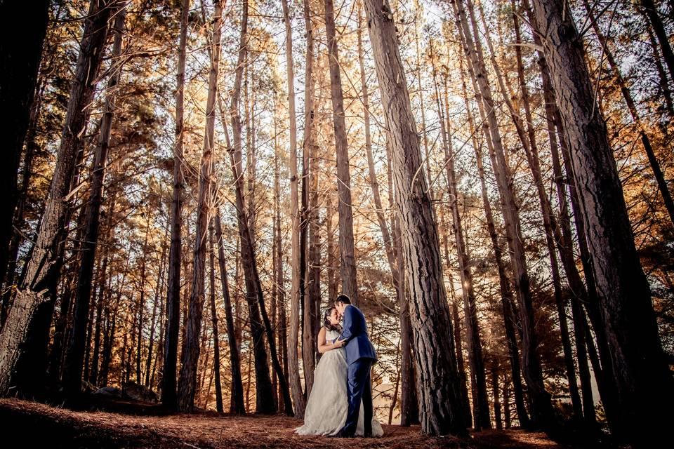Sesión post boda en algarrobo